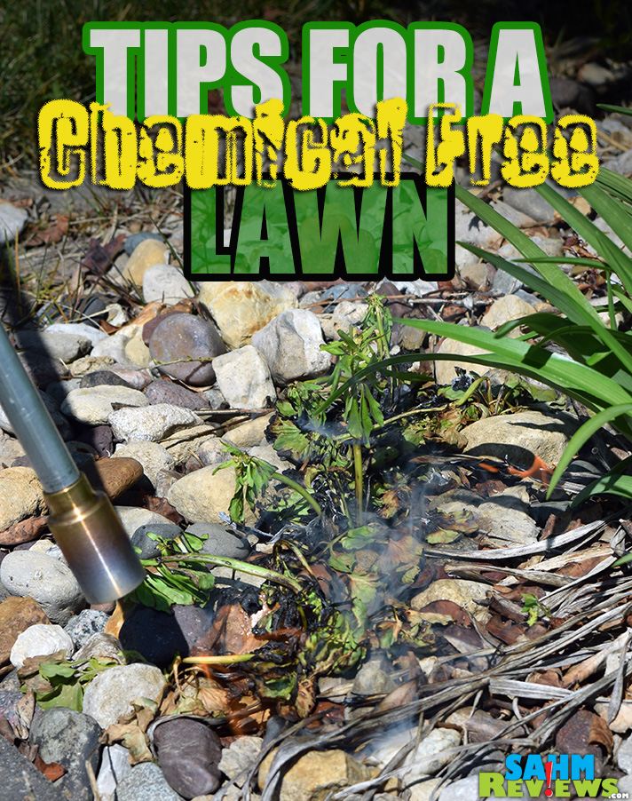 Among the great options for having a chemical free lawn, the BernzOmatic Yard & Lawn Torch was the most fun to use by far! - SahmReviews.com