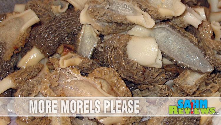 Flashback: Edible Gold – Morel Mushrooms