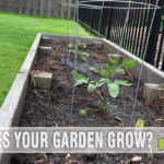 Don't be afraid of the dirt! Use these tips to create a garden. - SahmReviews.com #Clorox2