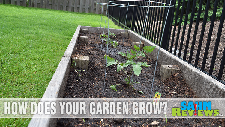 Tips for Creating a Garden