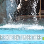 Wet cell phone? Here are tips on what to do when your phone ends up under water. - SahmReviews.com #BloggerBrigade #BetterMoments