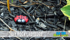 DIY Pet Rock Ladybugs Craft Tutorial