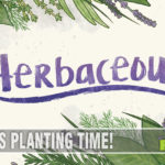 I'll bet you don't have a game in your collection all about collecting herbs, do you?! Pencil First Games' latest, Herbaceous, should be on your shelf. - SahmReviews.com
