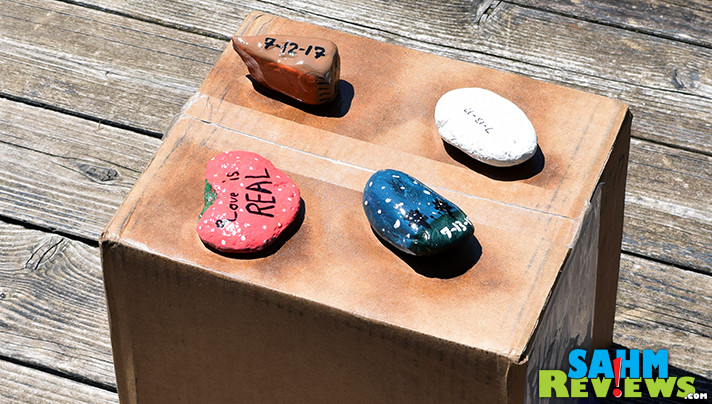 Rock painting is turning into an annual affair at our household! This year we made a couple dozen and hid them around our town! - SahmReviews.com