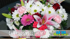 Flower Power: Valentine's Day Bouquets