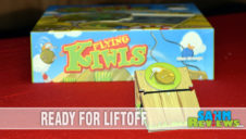 Flying Kiwis Dexterity Game Overview