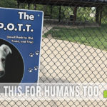 Give your dog some much-needed fresh air and opportunity to run by visiting one of these dog parks in the Quad Cities IA/IL. - SahmReviews.com