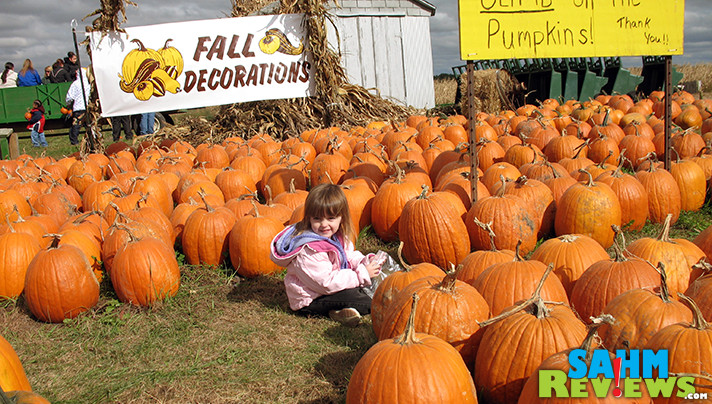 There are still wholesome (and scary) opportunities to celebrate Halloween. Check out these Quad Cities haunted houses and pumpkin patches. - SahmReviews.com