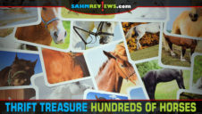 Thrift Treasure: Hundreds of Horses Game