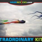 Kites are not what they used to be. You can now get almost any shape or size up in the air! Here are 16 you'll want to try for yourself! - SahmReviews.com