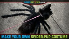Spider-Pup Halloween Costume Tutorial