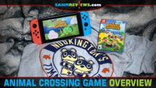 Animal Crossing: New Horizons Video Game Overview